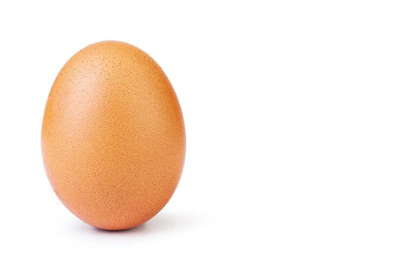 real organic egg