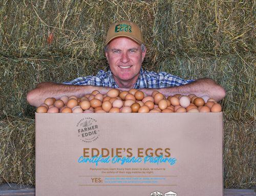 Farmer Eddie's Eggs
